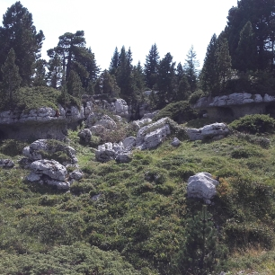 des champignons de pierre sur le mont Pinet, merveilleuses sculptures dues au gel !