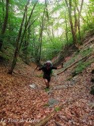 Début de la journée, rando dans 20cm de feuilles mortes !