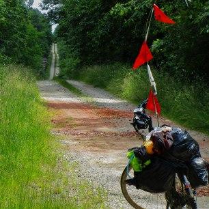 La belle forêt sauvage des Chambarans... Oui, la frontière, c'est la route. ça en dit long sur les intérêts que peuvent avoir les départements à régir les espaces forestiers...