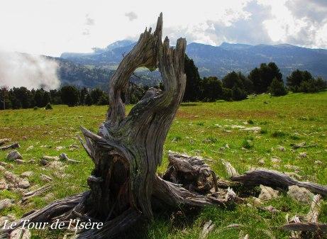 Rocher du Plautret, fantaisie naturelle.